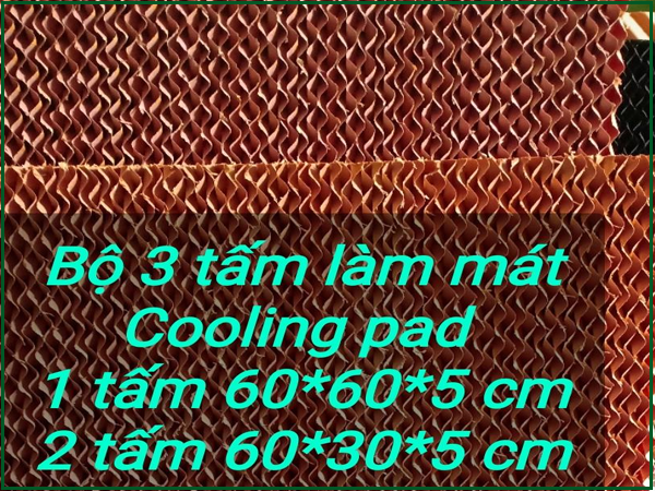 Chiều cao của tấm cooling pad