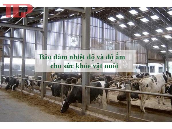 Hệ thông làm mát trong chăn nuôi