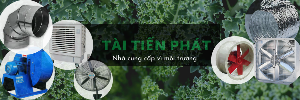 tai-tien-phat-san-xuat-quạt-cong-nghiep